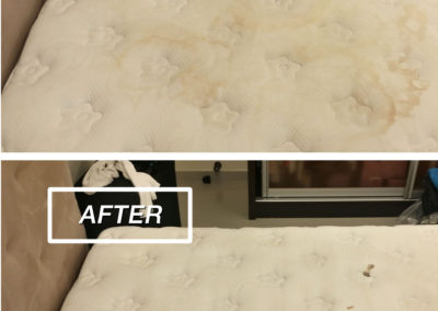 stain_removal_before_after-12