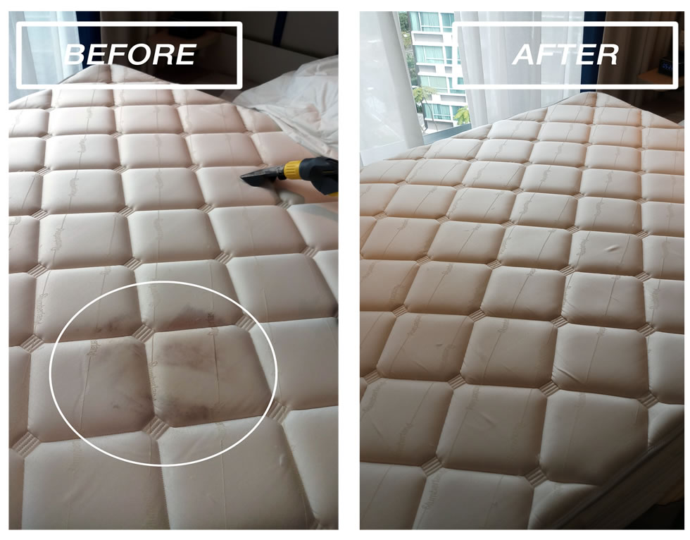 Mattress Cleaning Fabric Sofa Cleaning Carpet Rug